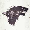 netgirl_y2k: (winter is coming)