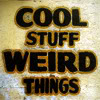 "outlineofash: Text reads: ""Cool stuff, weird things."" (Text - Cool Stuff Weird Things)"