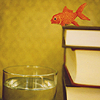 daydream: (fishoutofwater)