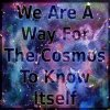 cislyn: We are a way for the cosmos to know itself (cosmos)