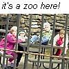 valarltd: (Zoo)