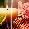 debris_k: candleorchid by miaka_zuster@lj (candleorchid by miaka_zuster@lj)
