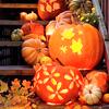 biodamped: ([snl] halloween lights)