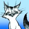 soranokumo: (Catt - Mew!)