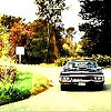 ninkasa: (Impala)