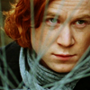 george_weasley: (watching from the shrubbery)
