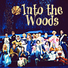 next_to_normal: Broadway cast of Into the Woods (Into the Woods)