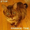 entrenous88: (silly: my frankie)