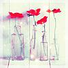 sukiyakiya: (flowers)