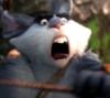 bunnyboomarang: (Default)