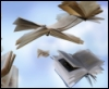 neotave: (flying books 2)