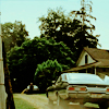 dotfic: (spn: impala)