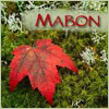 jeanniemac: Fall Leaf (mabon)