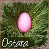 jeanniemac: Egg (ostara)
