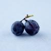 peacefulleigh: (blueberries)