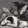 niko: (Reason of Sleep)