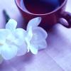 vanillateatime: (tea and flowers, Default) (Default)