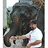 howeird: (How Elephant)