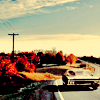 naanima: ([SPN] Impala through the country)