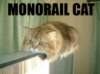 mattbell: (monorail cat)
