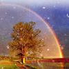 turps: (rainbow (wizzicons))
