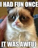 "firecat: grumpycat with text ""I HAD FUN ONCE IT WAS AWFUL"" (grumpycat)"
