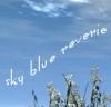 "skyblue_reverie: ""sky blue reverie"" on a background of sky ([custom] sky blue grass)"