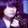 galeaya: galeaya loves Konishi (kconiq)