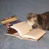 affreca: (Books)