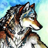 sashajwolf: drawing of a wolf (wolf drawing)