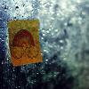 beilul: (i love the rain)