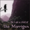 nephir: Child of the Morrigan (raven)