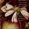 blackmare: (whiteflower)