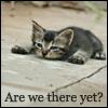 helbling: (cutie!)