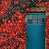 wendyr: (blue door)