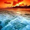 sheilacassel: (surf)