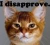 tattycat: (disapprove)