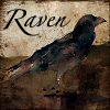 lunadelcorvo: (Raven grungey)