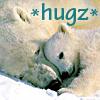 lunadelcorvo: (Polar bear hugs)