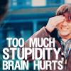 lunadelcorvo: (Stupidity brain hurts)