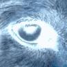k_a_t_z: (eye)
