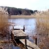 marshtide: (Lake)