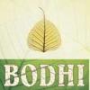 bodhifox: (bodhi)