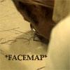 canadian_jay: *facemap* (*facemap*)