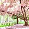 rabidfan: (springtime)