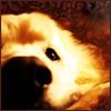 sundog: (Sad)