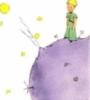csad: The Little Prince (Default)