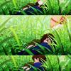 skyshores: (through the grass)