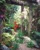 helen99: Magic garden (Magic Garden)