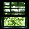 bodlon: (dimlight - window)